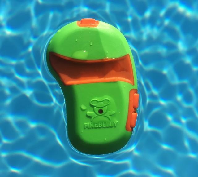 Sometimes You Just Need a Swim Companion